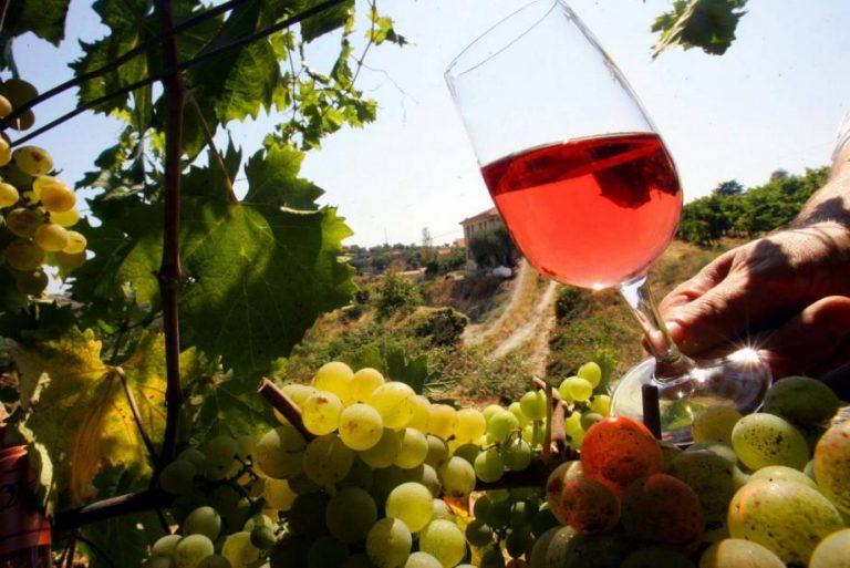 Vin Rosé Vignes